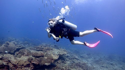 PADI Open Water Course in Phuket