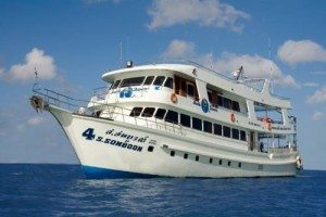 Diving day trip to Similan Islands