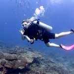 SSI Open Water is the best dive course for beginners